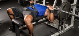 complete guide training chest exercises