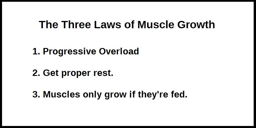 three laws muscle growth