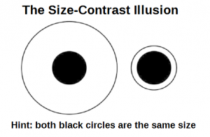 size contrast illusion