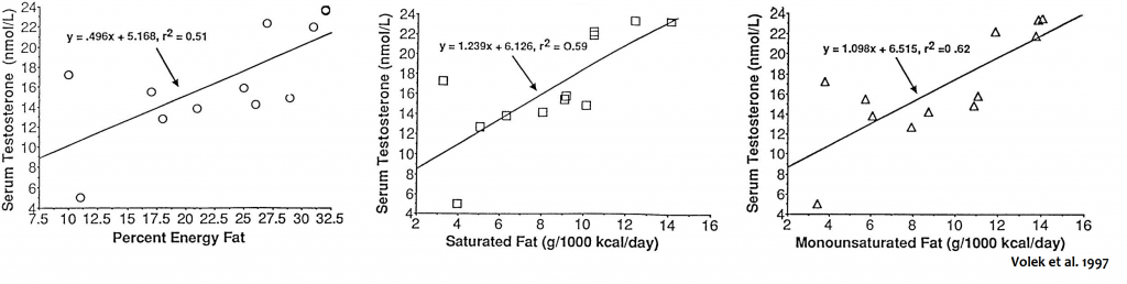 serum testosterone fat saturated fat monounsaturated fat energy