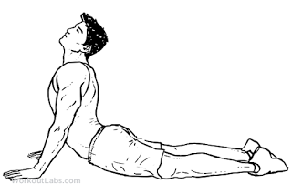 stretches for office workers the cobra stretch
