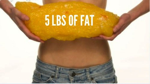 5lbs of fat model