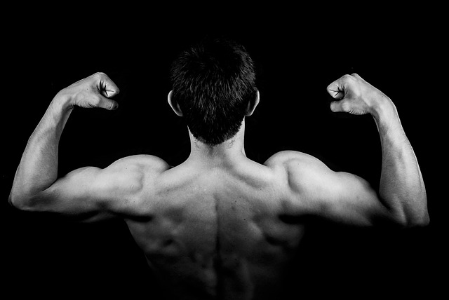 training back muscles complete guide exercises