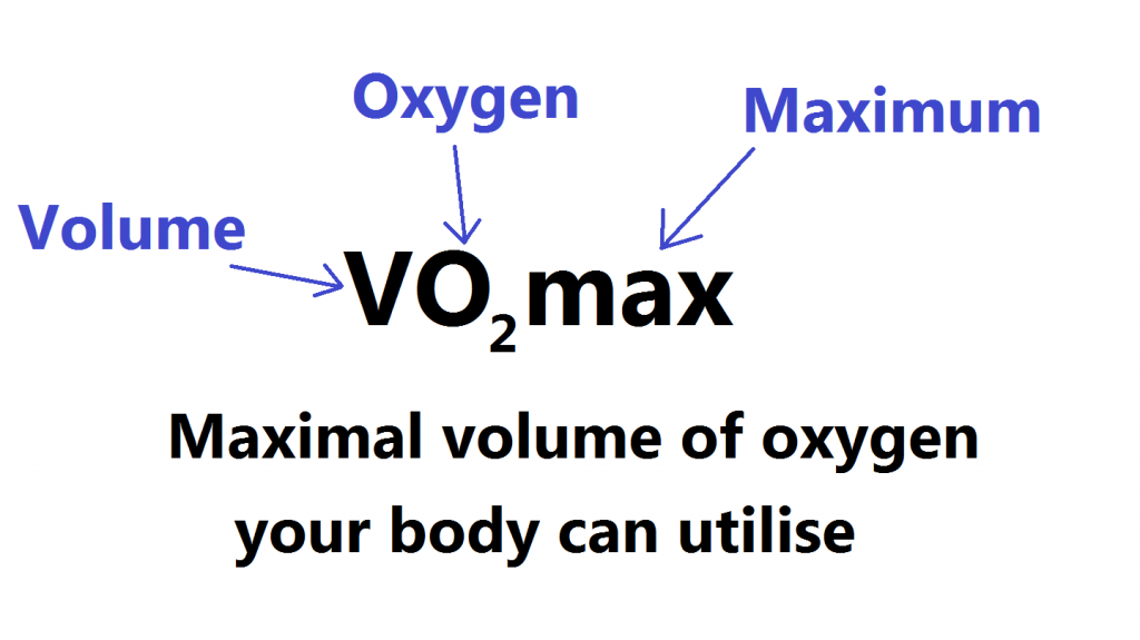 what is VO2 max definition