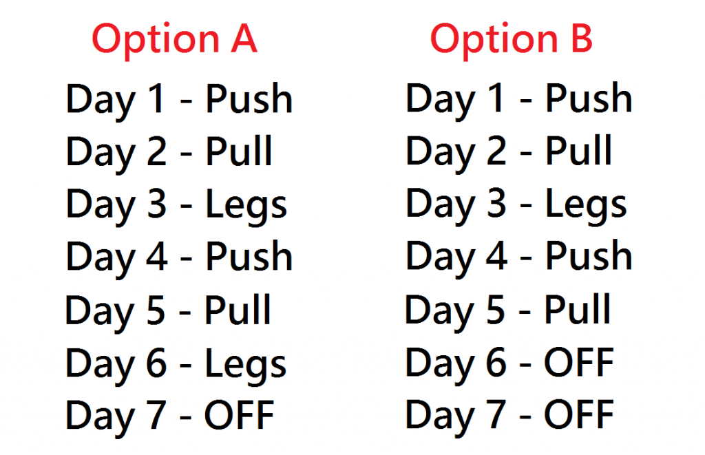 Push Pull Legs Program Ppl