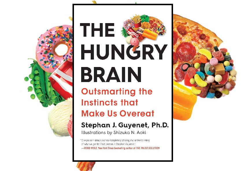 The Hungry Brain Book Review