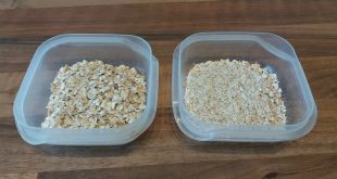 regular oats oatmeal porridge oats instant